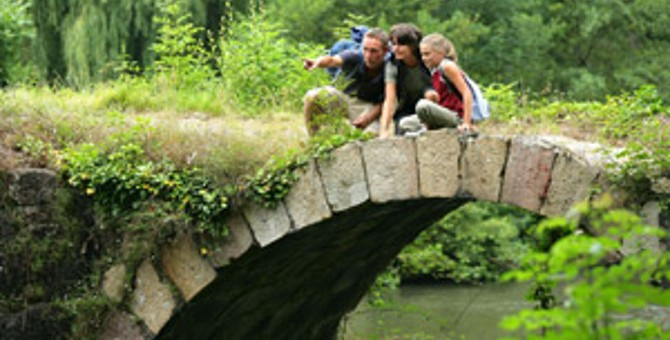 670_Family-out-for-a-walk-on-bridge